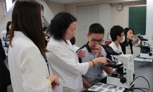 臨床実習(学生が中国留学生をサポート)