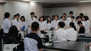 臨床実習3(日本の学生紹介)
