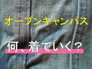 ブログ(服装)